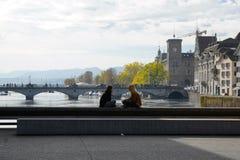 Stad och kanton för ZÃ-¼ rik i Schweiz i Europa royaltyfri fotografi