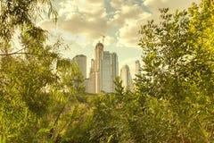 Stad och natur Arkivfoto