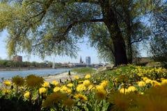 Stad op de rivier Drava, Osijek Stock Foto's