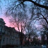 Stad på soluppgång Arkivfoto