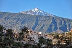 Stad Puerto de la Cruz och berg Teide, Tenerife, kanariefåglar Royaltyfria Foton