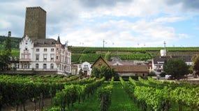 Stad Rudesheim arkivfoto