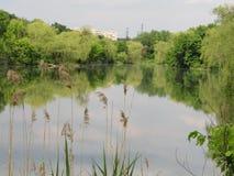 Stad sjö royaltyfri foto