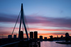 Stad van de Horizonsilhouet van Rotterdam Royalty-vrije Stock Foto