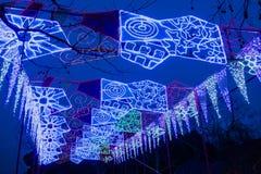 2016 stad van de Lantaarncarnaval van Shanghai de Internationale Magische van licht Royalty-vrije Stock Afbeeldingen