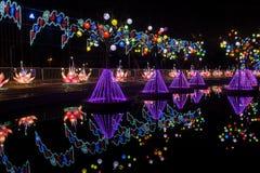 2016 stad van de Lantaarncarnaval van Shanghai de Internationale Magische van licht Stock Afbeelding