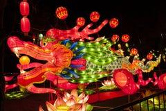 2016 stad van de Lantaarncarnaval van Shanghai de Internationale Magische van licht Royalty-vrije Stock Afbeelding