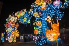 2016 stad van de Lantaarncarnaval van Shanghai de Internationale Magische van licht Stock Foto's