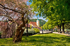 Stad van het park en de kerk van Samobor Stock Afbeelding