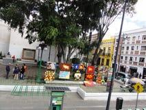 Stad van Puebla, Puebla DE Los Angeles - Mexico stock foto's