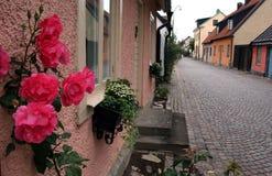 Stad van rozen Stock Fotografie