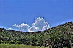 Stad van Stervallei, Gila County, Arizona, Verenigde Staten, het Nationale Bos van Tonto stock afbeeldingen