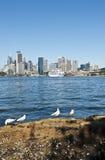 Stad van Sydney Royalty-vrije Stock Afbeelding
