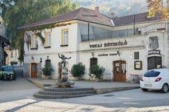 Stad van Tokaj, Hongarije stock afbeeldingen