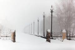 stad, vorst, stilte, landschap, dijk in sneeuw, de winter, blizzard, sneeuw Stock Afbeeldingen