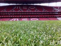 Stade de Benfica Photographie stock libre de droits
