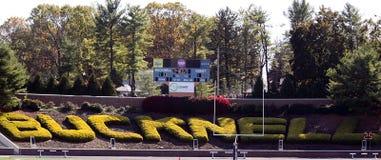 Stade de football de Buckell Images stock