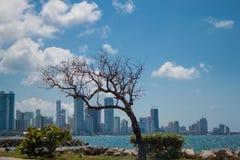Staden av Cartagena Colombia Arkivfoto