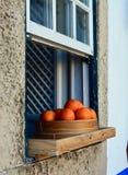 Staden av Obidos Apelsin Royaltyfri Fotografi