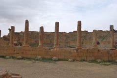 Staden av Timgad Arkivbild