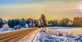 staden nära den järnväg vägen skiner snowsunen för att övervintra trä Arkivfoto