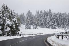 staden nära den järnväg vägen skiner snowsunen för att övervintra trä Fotografering för Bildbyråer