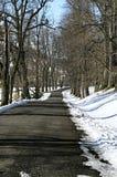 staden nära den järnväg vägen skiner snowsunen för att övervintra trä Royaltyfri Foto