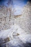 staden nära den järnväg vägen skiner snowsunen för att övervintra trä Royaltyfri Fotografi