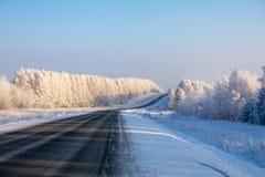 staden nära den järnväg vägen skiner snowsunen för att övervintra trä Den svarta huvudvägen går till och med en vit snö-täckt fro royaltyfri fotografi
