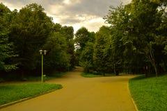 Staden parkerar gränder på en molnig dag Grön skog royaltyfri foto