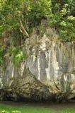 Staden parkerar grottor, Phangnga Royaltyfria Bilder