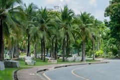 Staden parkerar i bangkok, Thailand Arkivbild