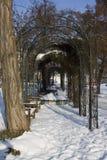 Staden parkerar i vinter Royaltyfri Fotografi