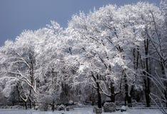 Staden parkerar i vinter Arkivfoto