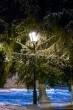 Staden parkerar i vinter på natten Royaltyfria Foton