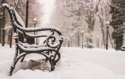 Staden parkerar Maksimir Zagreb, vinter Royaltyfria Foton