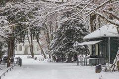 Staden parkerar Maksimir Zagreb, vinter Royaltyfri Bild