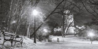 Staden parkerar Maksimir Zagreb, vinter Arkivbild