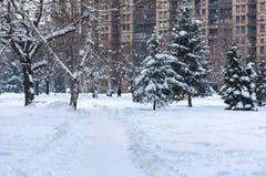 Staden parkerar och vandringsledet som täckas med stor snö arkivfoton