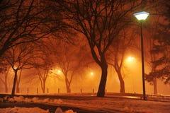 Staden parkerar på natten Royaltyfria Foton