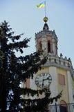 Staden står hög Royaltyfria Bilder