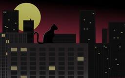 staden tänder nattplats Arkivbild