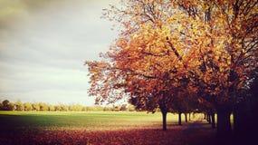 Stadfältet parkerar England Fotografering för Bildbyråer