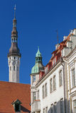 Stadhuistoren. Oud Tallinn, Estland Royalty-vrije Stock Foto's