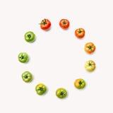 Stadien von den reifenden Tomaten Stockbilder