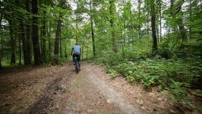 Stadig kamsikt av manridningbycicle på skogvägen arkivfilmer