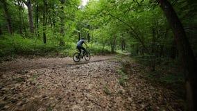 Stadig kamsikt av manridningbycicle på skogvägen lager videofilmer