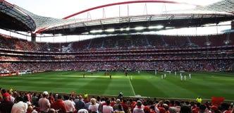 Panorama dello stadio di Benfica immagini stock libere da diritti