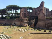 Stadio Palatino at the Roman Forum Stock Images
