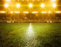 Stadion, eingebildet vektor abbildung